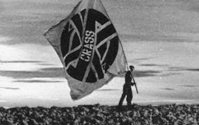 crassflag